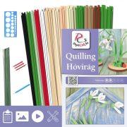 Hóvirág - Quilling minta (230db csík 5db mintához és leírás, eszközök)